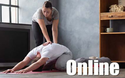 Foundations of Integral Yoga Therapy – Online